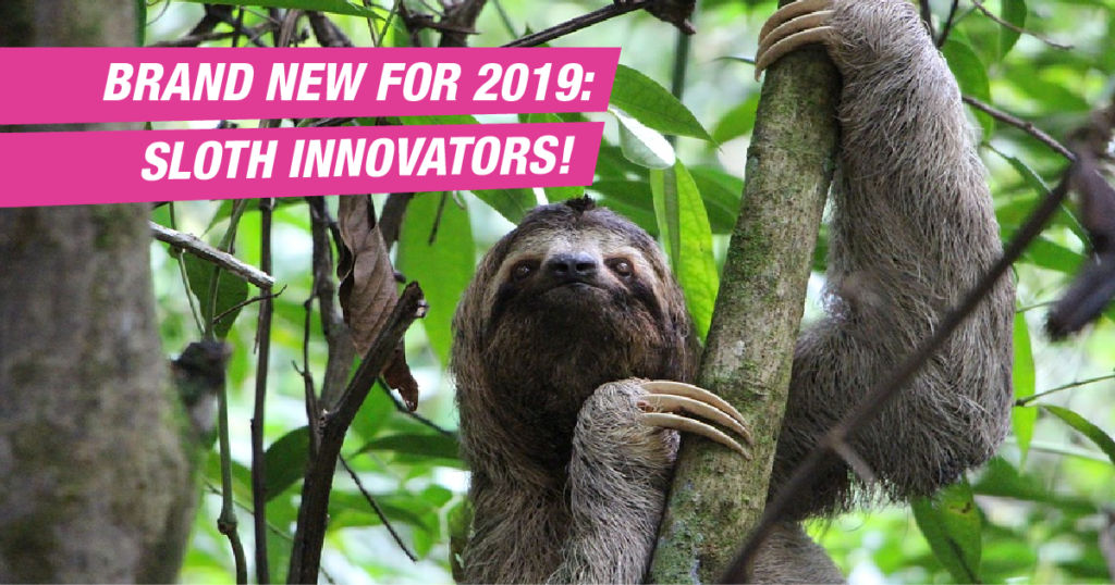 Brand new for 2019: Sloth Innovators!